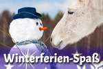 Unvergessliche Winterferien auf einem Bauernhof